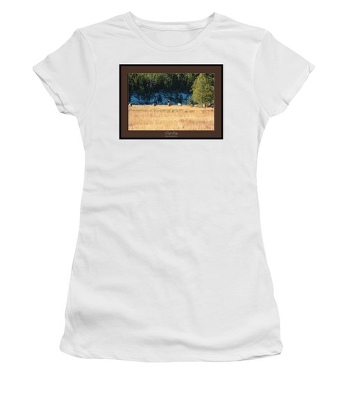 Women's T-Shirt (Athletic Fit) featuring the photograph Bull And His Babes Poster by Pete Federico