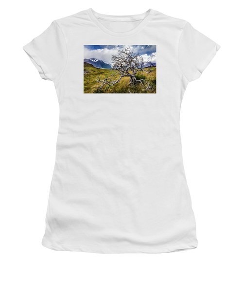 Burnt Tree, Torres Del Paine, Chile Women's T-Shirt