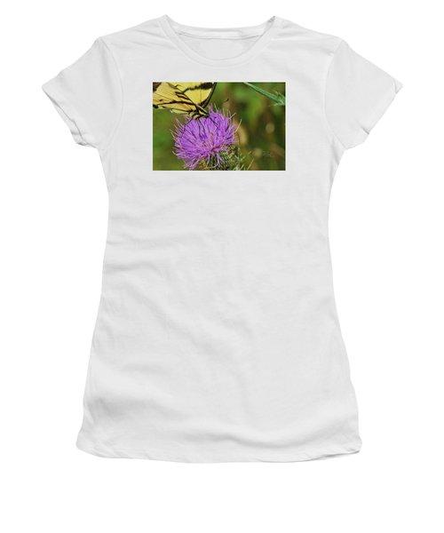 Butterfly On Bull Thistle Women's T-Shirt
