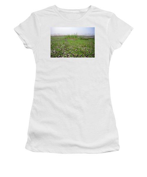 Dry Duck Pond Women's T-Shirt