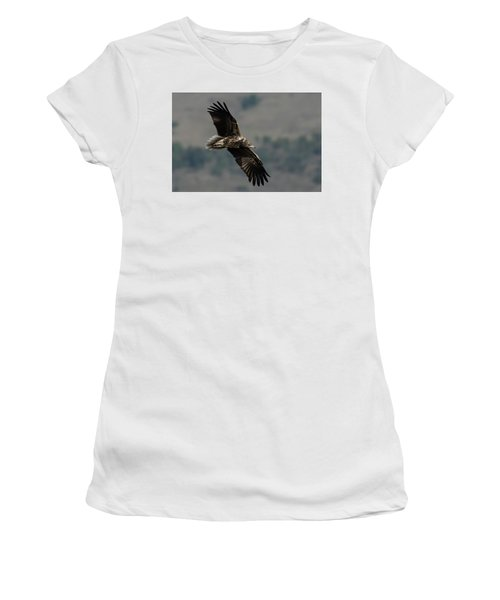 Egyptian Vulture, Sub-adult Women's T-Shirt