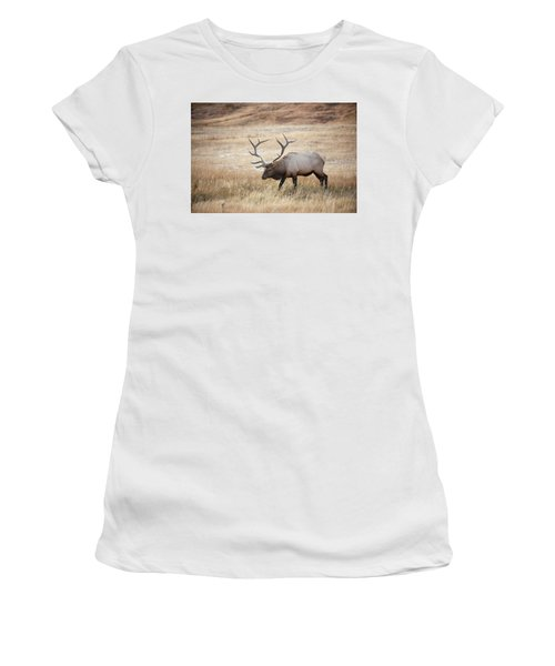Elk In Yellowstone National Park Women's T-Shirt