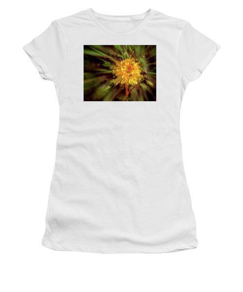 Exploding Wildflower Women's T-Shirt