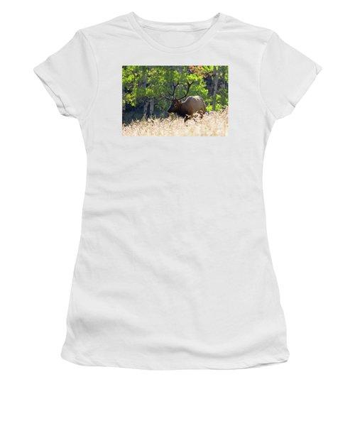 Fall Color Rocky Mountain Bull Elk Women's T-Shirt