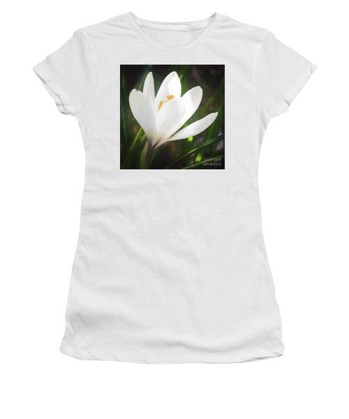 Glowing White Crocus Women's T-Shirt