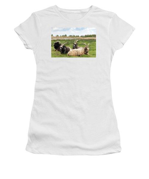Women's T-Shirt featuring the photograph Goats  by Anjo Ten Kate