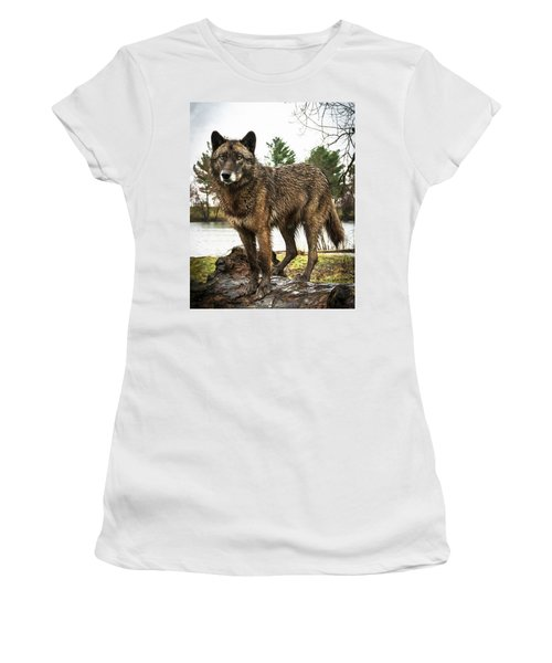 Handsome Niko Women's T-Shirt