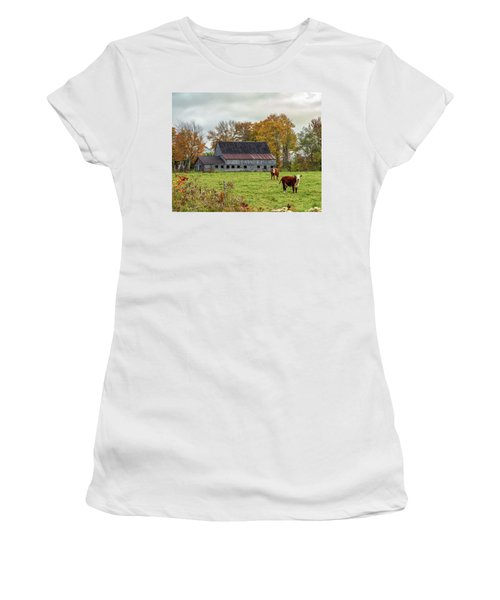 Herefords In Fall Women's T-Shirt