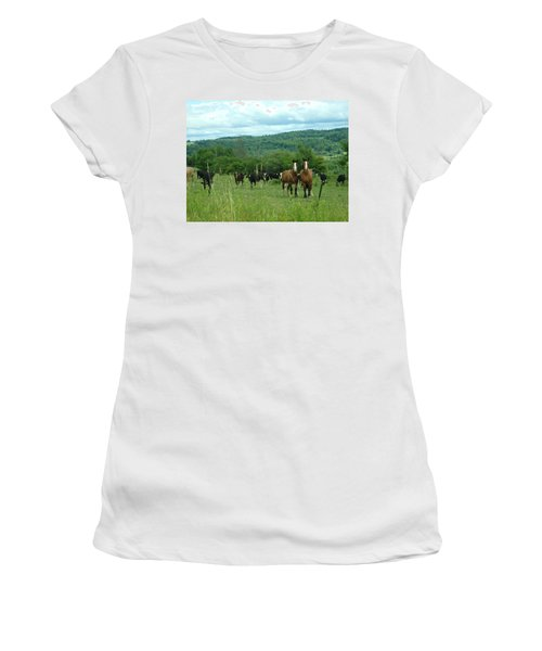 Horse And Cow Women's T-Shirt