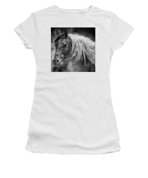 Into The Mist Women's T-Shirt