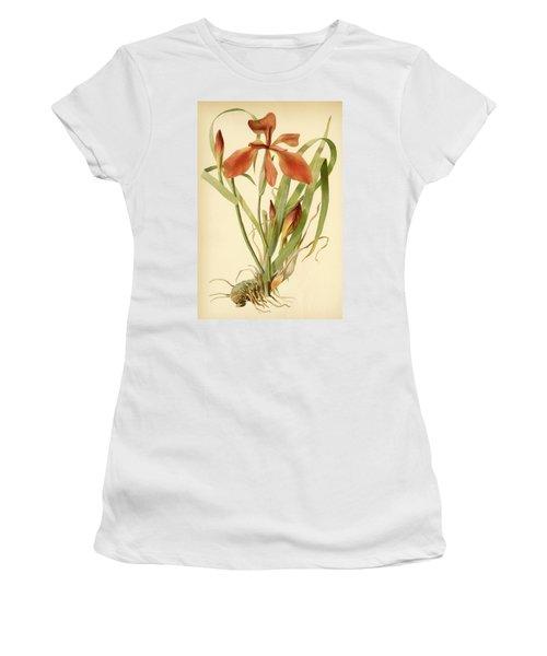 Iris Cuprea Copper Iris.  Women's T-Shirt
