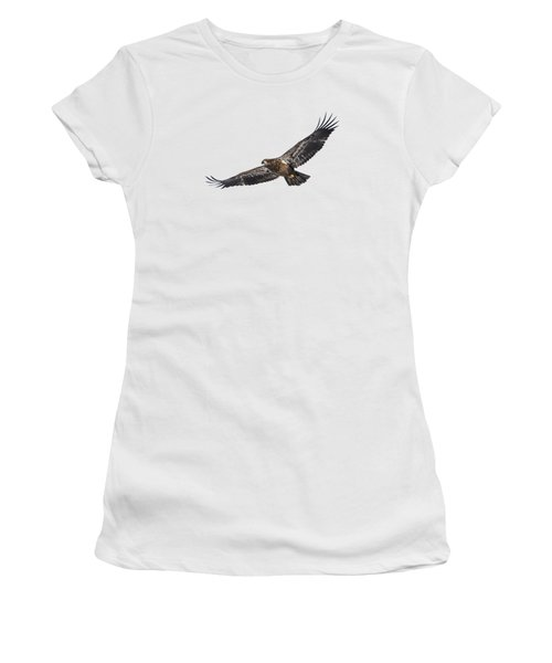 Isolated Bald Eagle 2018-3 Women's T-Shirt