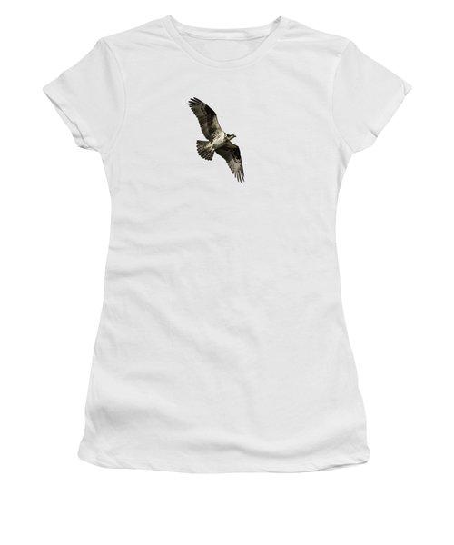 Isolated Osprey 2019-2 Women's T-Shirt