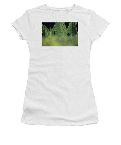 Large Dark Green Leaves Women's T-Shirt
