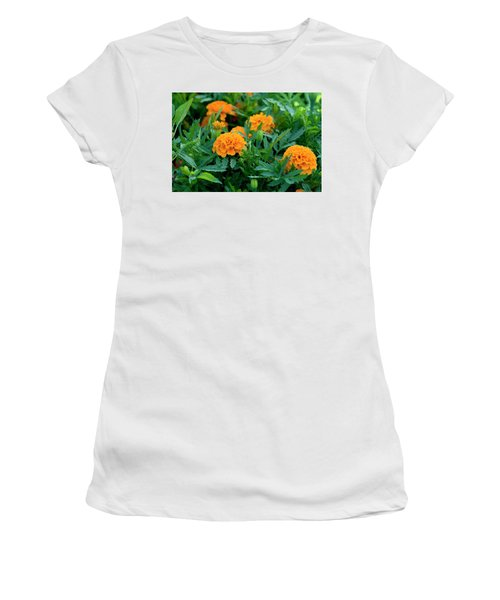 Marigolds Women's T-Shirt (Athletic Fit)