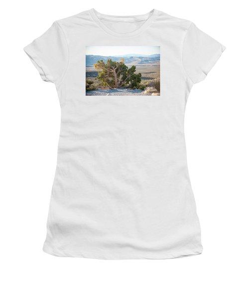 Mesquite In Nevada Desert Women's T-Shirt
