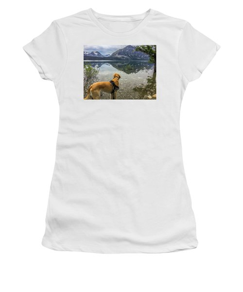 Women's T-Shirt featuring the photograph Photo Dog Jackson At Glacier by Matthew Irvin