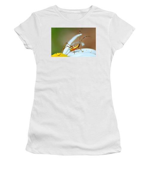 Pollen Tracks Women's T-Shirt