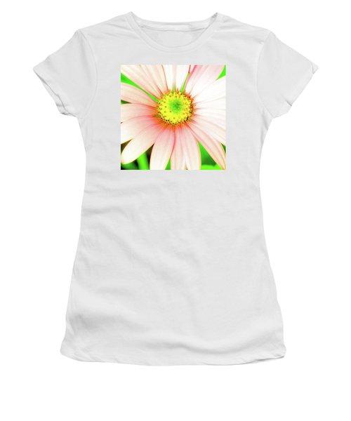 Pop Art Osteospermum 1 Women's T-Shirt