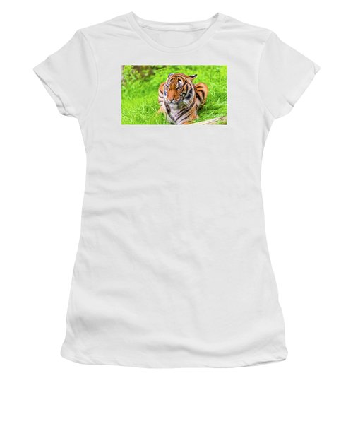 Ready To Pounce Women's T-Shirt