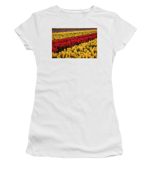 Row After Row After Row Of Tulips Women's T-Shirt