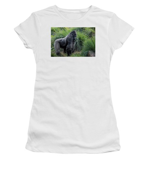 Silverback Stare 1806 Women's T-Shirt