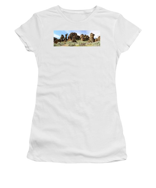 Arches Hoodoos And Castles The Big Picture Little City Of Rocks Women's T-Shirt
