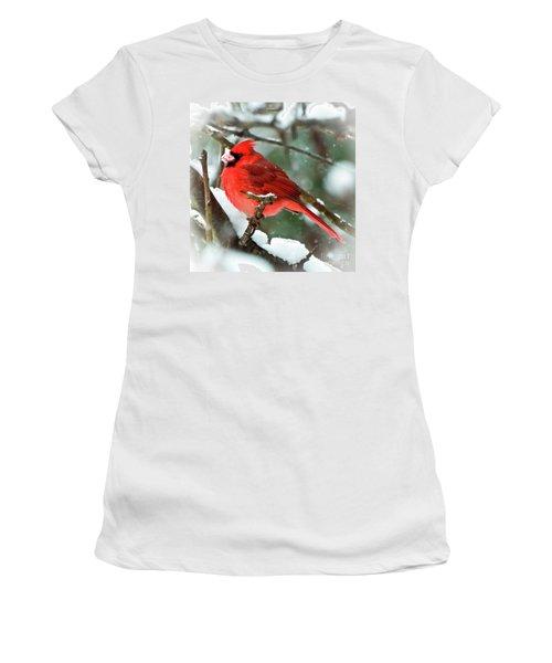 Winter Red Bird - Male Northern Cardinal With A Snow Beak Women's T-Shirt