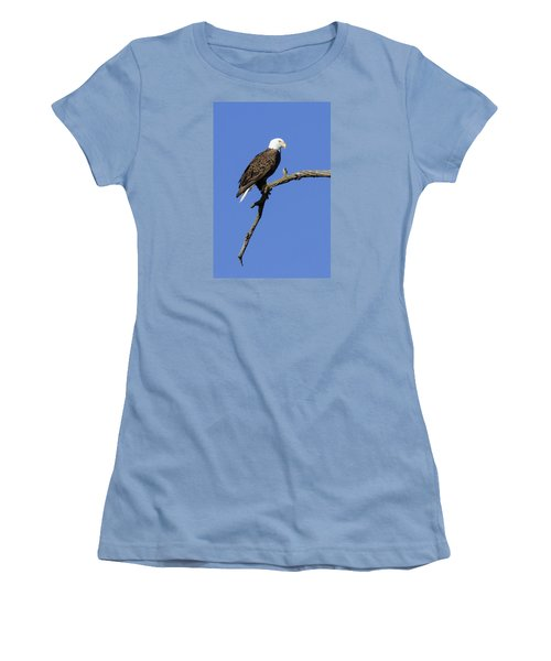 Women's T-Shirt (Junior Cut) featuring the photograph Bald Eagle 4 by David Lester