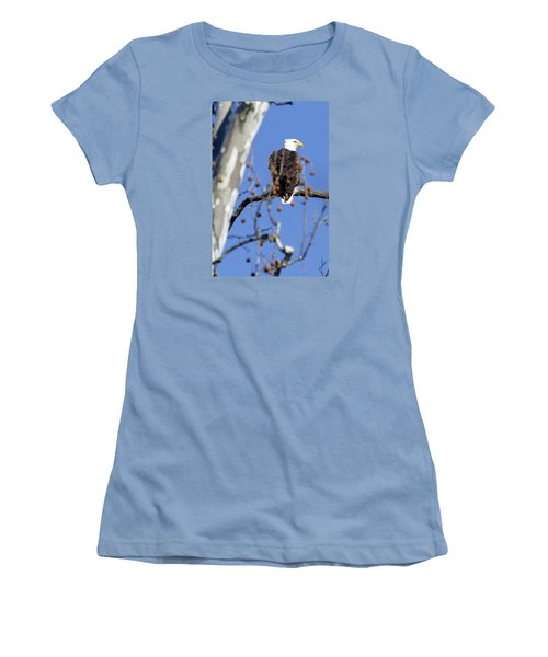 Women's T-Shirt (Junior Cut) featuring the photograph Bald Eagle by David Lester
