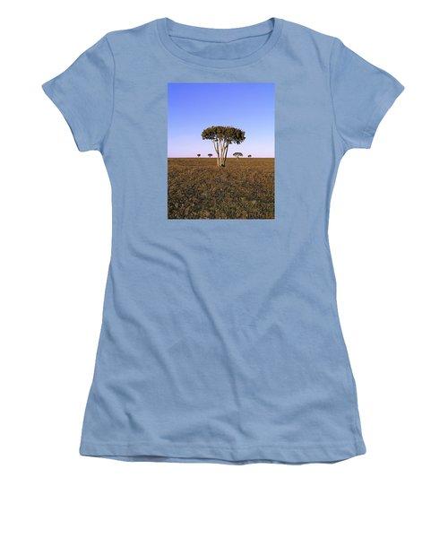 Barren Tree Women's T-Shirt (Athletic Fit)