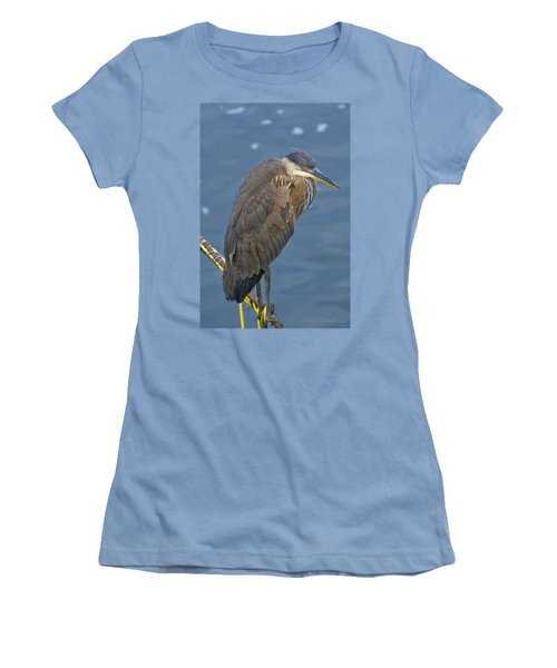 Blue Herron Women's T-Shirt (Junior Cut) by Jim Thompson