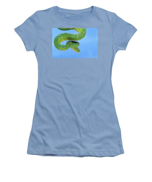Emerald Tree Boa Corallus Caninus Women's T-Shirt (Junior Cut) by Thomas Kitchin & Victoria Hurst