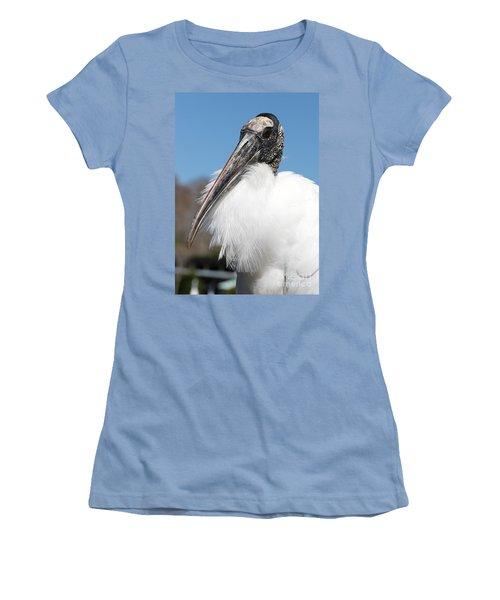 Fluffy Wood Stork Women's T-Shirt (Junior Cut) by Carol Groenen