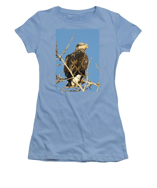 Immature Bald Eagle Women's T-Shirt (Athletic Fit)