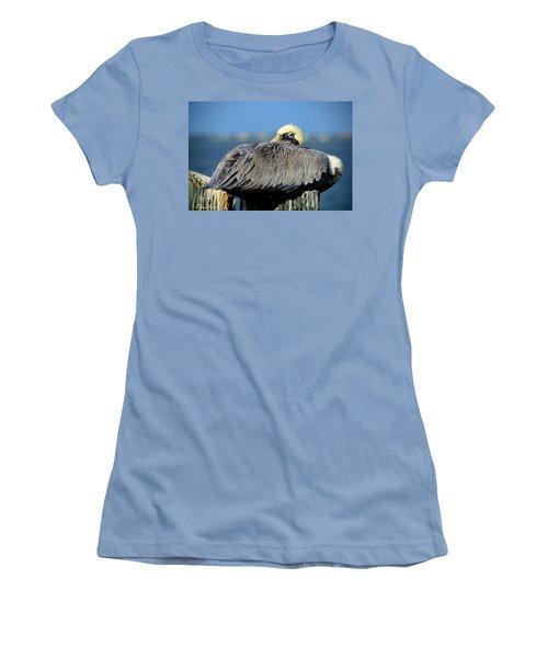 Let Sleeping Pelicans Lie Women's T-Shirt (Athletic Fit)