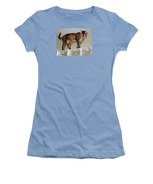 Women's T-Shirt (Junior Cut) featuring the photograph Tora On Glass II by Phyllis Kaltenbach
