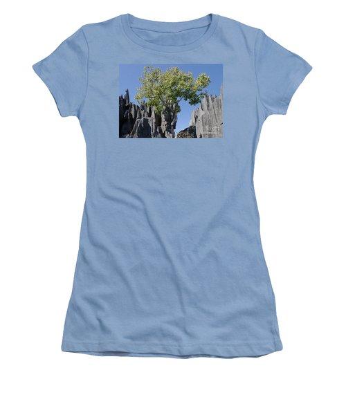 Tree In The Tsingy De Bemaraha Madagascar Women's T-Shirt (Junior Cut) by Rudi Prott