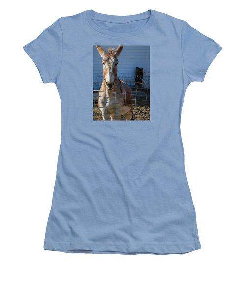 What's Up Women's T-Shirt (Junior Cut) by Nadalyn Larsen