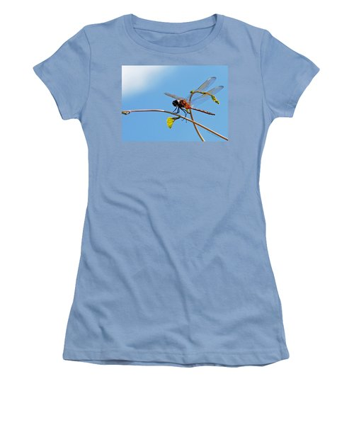 Dragonfly On A Vine Women's T-Shirt (Junior Cut) by Kay Lovingood