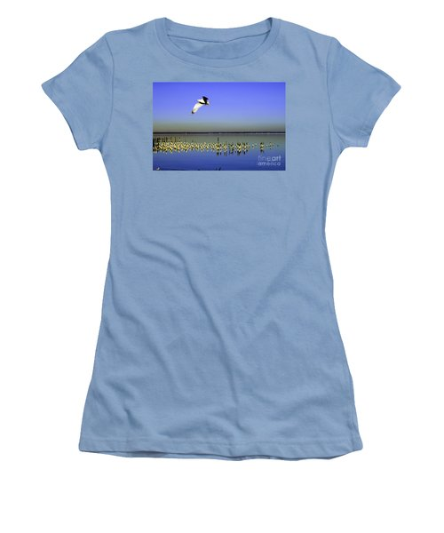 Flying Solo Women's T-Shirt (Junior Cut) by Clayton Bruster