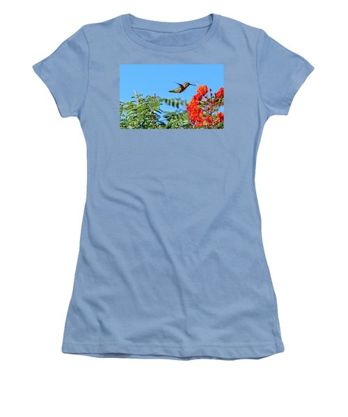 Feeding  Anna's Hummingbird Women's T-Shirt (Junior Cut) by Robert Bales