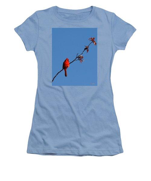 Cardinal On A Cherry Branch Dsb033 Women's T-Shirt (Junior Cut) by Gerry Gantt