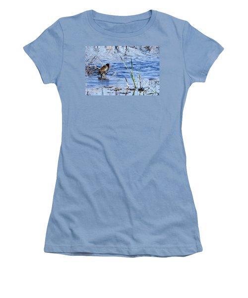 Common Gallinule Women's T-Shirt (Athletic Fit)