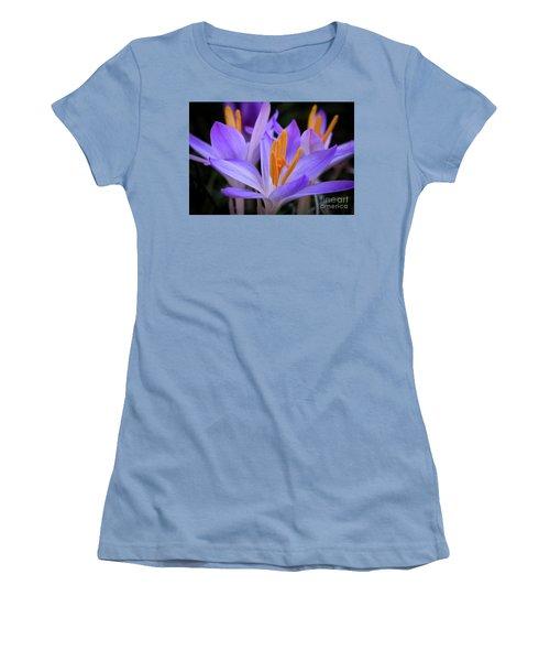 Crocus Explosion Women's T-Shirt (Junior Cut) by Douglas Stucky