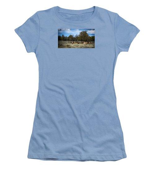 Elk Family Women's T-Shirt (Junior Cut) by Sandy Molinaro