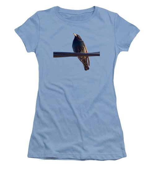 European Starling Trasparent Background Women's T-Shirt (Athletic Fit)