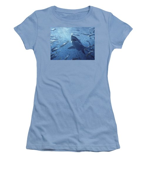 Great White Shark Carcharodon Women's T-Shirt (Athletic Fit)