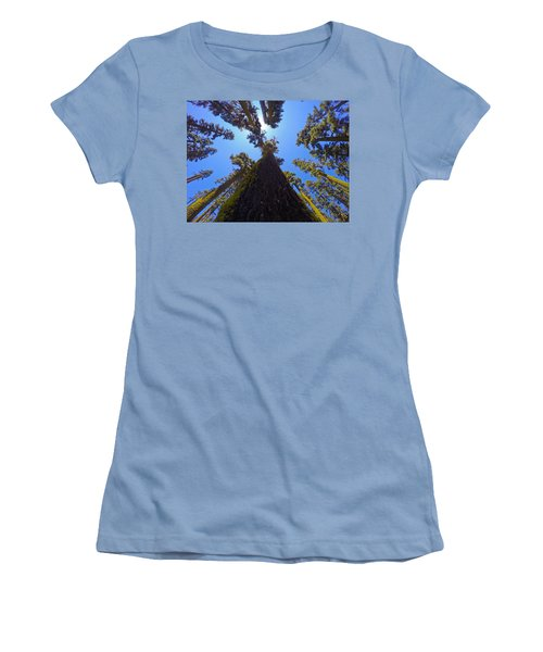 Land O' Trees Women's T-Shirt (Athletic Fit)