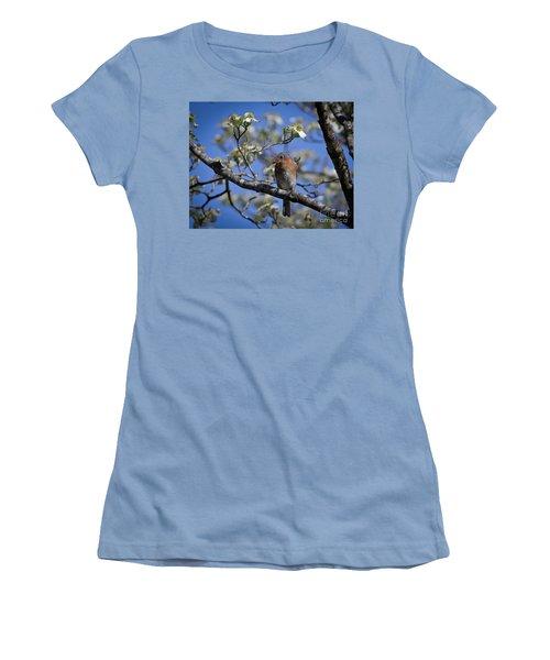 Nest Building Women's T-Shirt (Junior Cut) by Douglas Stucky